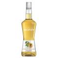 Lichior Monin - Caise / Abricot ( Apricot)  2...