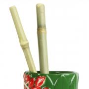 Paie din Bambus - set de 10buc