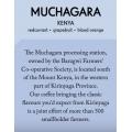 Casino Mocca - Muchagara - Kenya - Filter - 200g