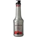 Piureuri Monin - Fructe de padure - Red berri...