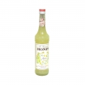 Sirop cocktail - Monin - Anason - Anis - 0.7L